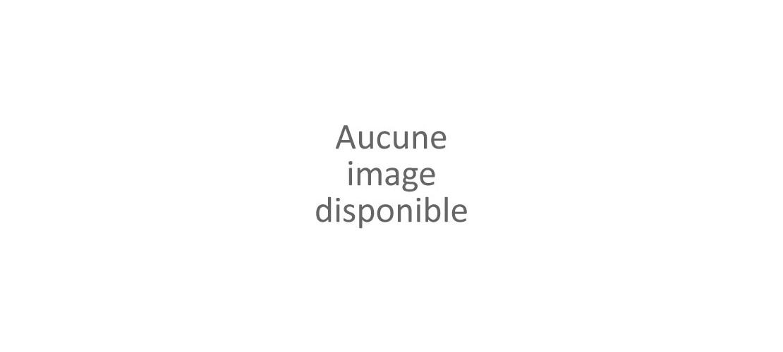 Poitrine-Lardons